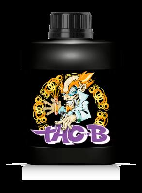 THC-B - Aporte de Magnesio