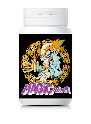 Magic Bloom - El PK Booster Nº1