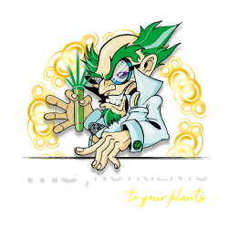 Quimico THC Nutrients